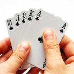 Gris - slik lærer du kortspillet